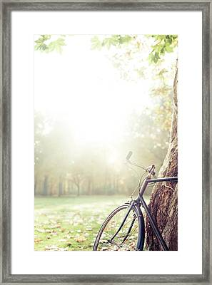 Bicycle Leaned On Big Tree In Sunlight. Framed Print by Guido Mieth
