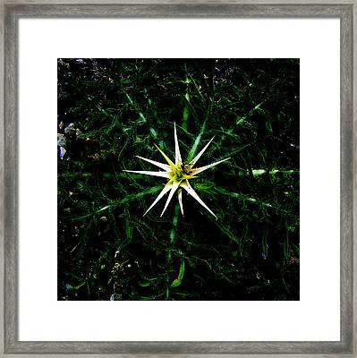Big Bang Framed Print by Guadalupe Nicole Barrionuevo