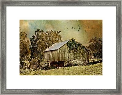 Big Barn Little Barn Framed Print by Kathy Jennings