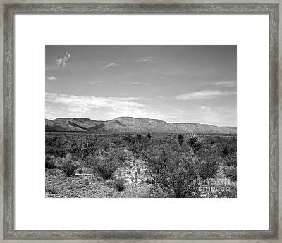 Big Bend Vista Framed Print