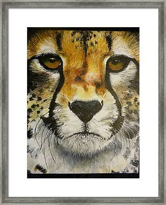 Big Cat Eyes Original Oil Painting 8 X 10 On Wrapped Canvas Provide Picture Framed Print by Shannon Ivins