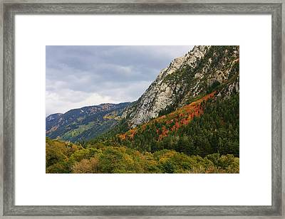 Big Cottonwood Canyon 2 Framed Print by Bruce Bley