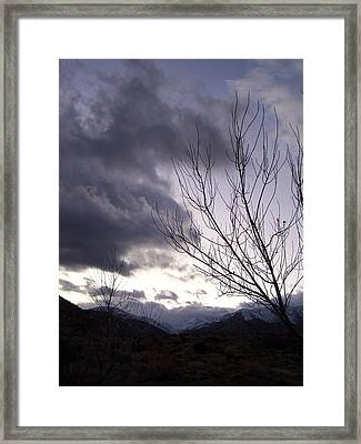 Big Morongo Canyon Framed Print