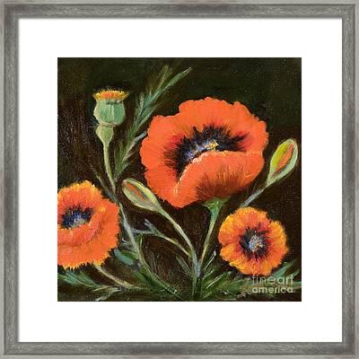 Big Orange Poppy Framed Print