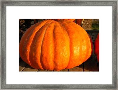 Big Orange Pumpkin Framed Print by LeeAnn McLaneGoetz McLaneGoetzStudioLLCcom