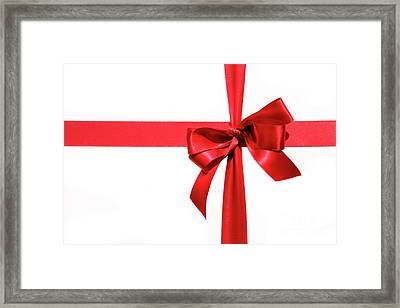 Big Red Holiday Bow On White Framed Print by Sandra Cunningham