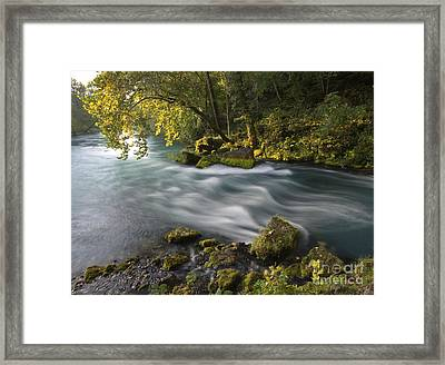 Big Spring Framed Print