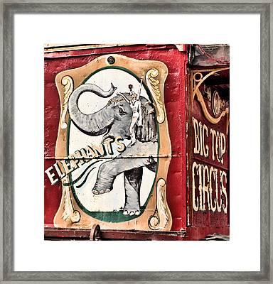 Big Top Elephants Framed Print