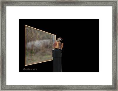 Biggest Breadcrumb Ever Framed Print by EricaMaxine  Price