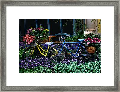 Framed Print featuring the photograph Bike Ride by Tammy Espino