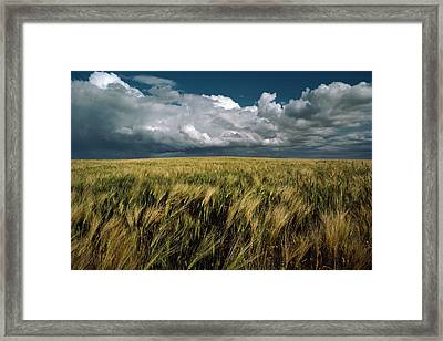 Billowy Clouds Form Over A Wind-swept Framed Print by Medford Taylor