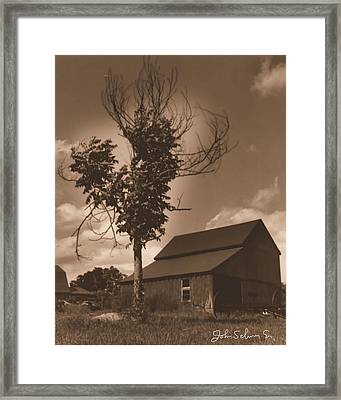 Bills' Barn Framed Print by John Selmer Sr