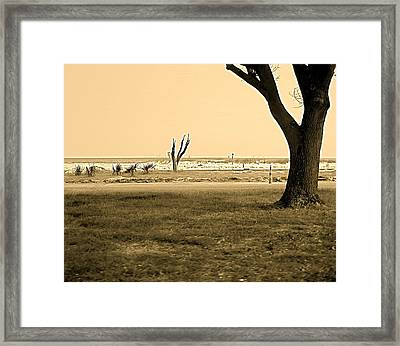 Framed Print featuring the photograph Biloxi Coast by Blake Yeager