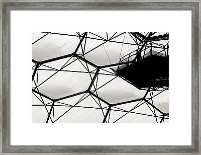 Framed Print featuring the photograph Biome Figure by Justin Albrecht