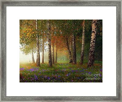 Birch Meadow Framed Print