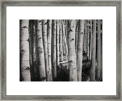 Birch Framed Print by Scott Robinson