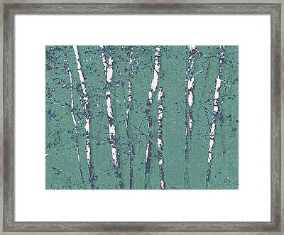 Birch Stand In Seaglass Framed Print