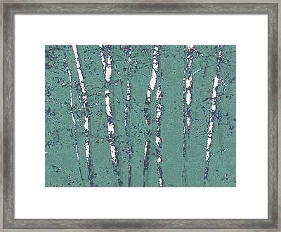 Birch Stand In Seaglass Framed Print by Katharine Birkett