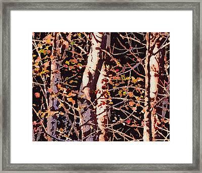 Birch Tapestry Framed Print by Katharine Birkett