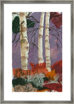 Birch Trio Framed Print