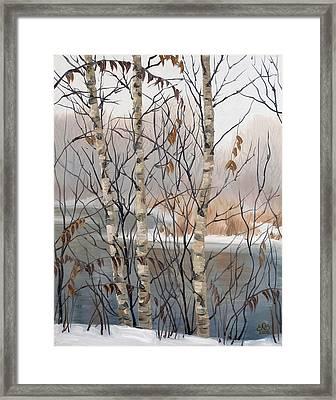 Birches Framed Print by Olena Lopatina