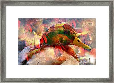 Bird But No Comfort Framed Print by Fania Simon
