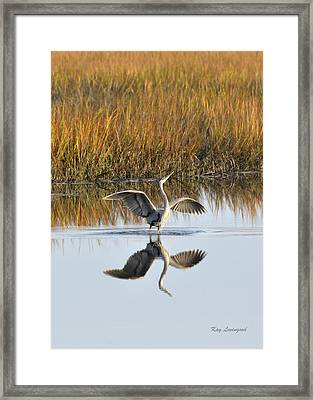 Bird Dance Framed Print