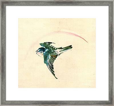Bird Flying 1840 Framed Print by Padre Art