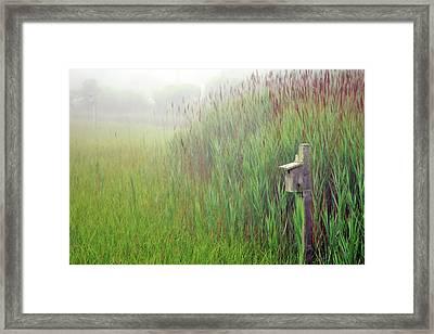 Bird House In Quogue Wildlife Preserve Framed Print by Rick Berk