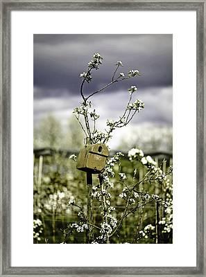 Bird House Framed Print