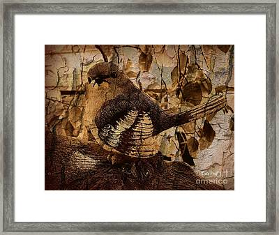 Bird In Brown Framed Print