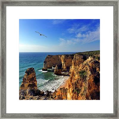 Bird In Flight  At Marinha Beach Framed Print by Pilar Azaña Talán
