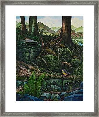 Bird In Paradise Vii Framed Print by Michael Frank