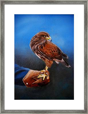 Framed Print featuring the painting Bird In The Hand by Lynn Hughes