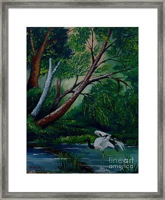 Bird In The Swamp Framed Print