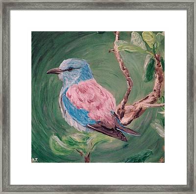 Bird  Framed Print by Katelynn Johnston