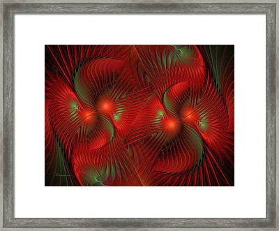 Bird Of Paradise Abstract Framed Print