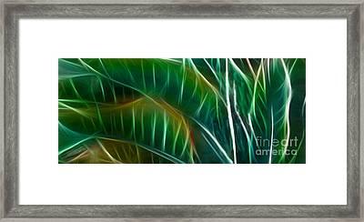 Bird Of Paradise Fractal Panel 3 Framed Print by Peter Piatt