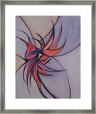Bird Of Paradise Framed Print by Tara Francoise