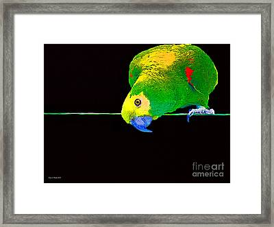 Bird On A Wire Framed Print by Jerry L Barrett