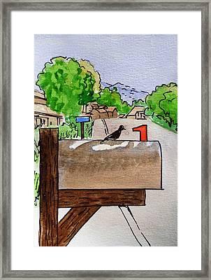 Bird On The Mailbox Sketchbook Project Down My Street Framed Print by Irina Sztukowski