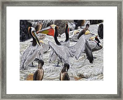 Bird Party  Framed Print by Judy Grant