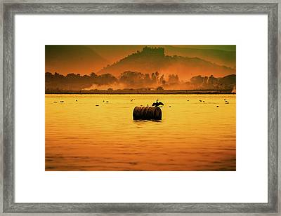 Bird Sitting On Drum Framed Print by Pushp Deep Pandey / 2kPhotography