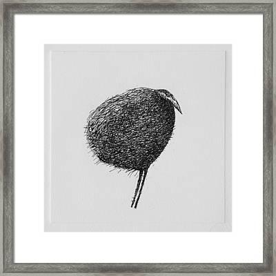 Bird Framed Print by Valdas Misevicius