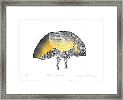 Bird Without A Voice Framed Print by Branko Jovanovic