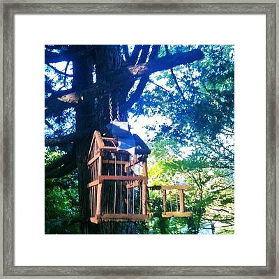 Birdcage Above My Reading Bench Framed Print
