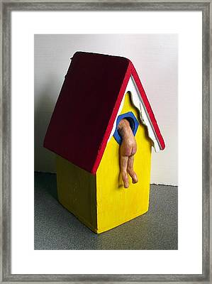 Birdhouse1 Framed Print by Sandy Wager