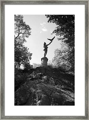 Birdman Of Central Park In Black And White Framed Print by Rob Hans