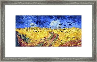 Birds And Lands Framed Print by Sumit Mehndiratta