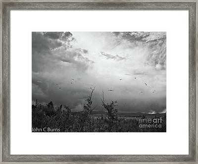Framed Print featuring the photograph Birds At Mono Lake by John Burns